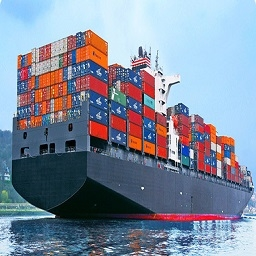 Container-Freight Services