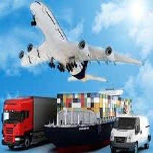 Shipping Companies & Agents